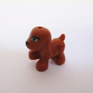 Puppy - Ginger