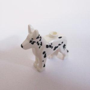 Dalmatian - White w/ Black Spots